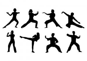 silhouette-of-tai-chi-women-vector[1]
